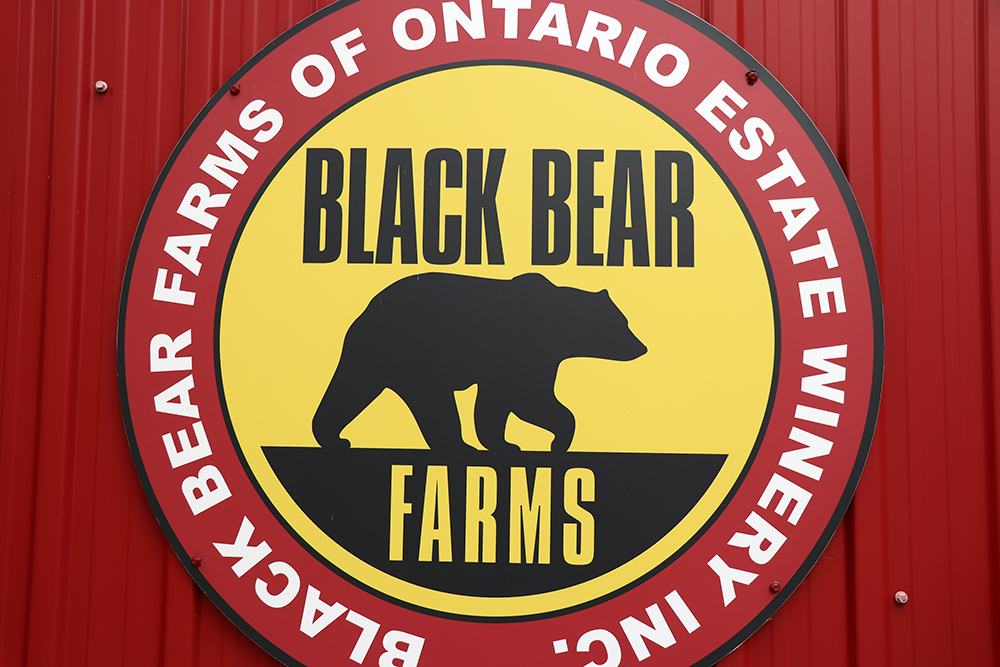 Black Bear Farms of Ontario Estate Winery Inc logo